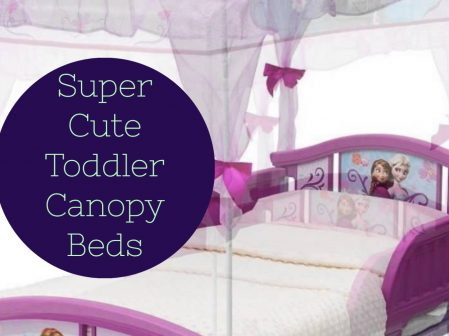 Toddler Beds with a Canopy – Too Cute!