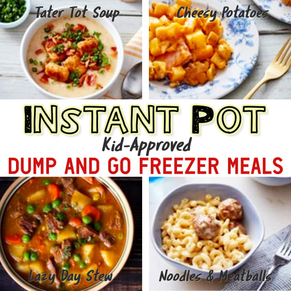 Easy Instant Pot Dump Recipes! These busy day dinner recipes go from freezer to Instant Pot to table in 30 minutes or less - perfect for picky eaters too.  9 of the best Kid-Approved Instant Pot freezer meals - insanely good and easy dump and go Instant Pot recipes for simple make ahead dinner for YOUR crowd.  Need recipes for dinner TONIGHT?  Try these simple Instant Pot freezer meals and budget recipes.