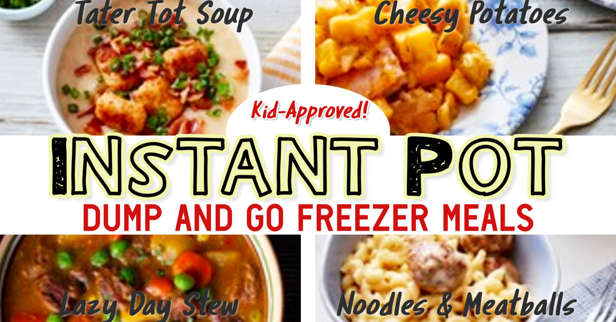 Easy Instant Pot Dump Dinners For Your Picky Crowd!  Love all these make ahead dinner recipes for dinner tonight!  Super simple Instant Pot freezer dump recipes and insaenly good 20 minute instant pot recipes for busy day family dinner on a budget